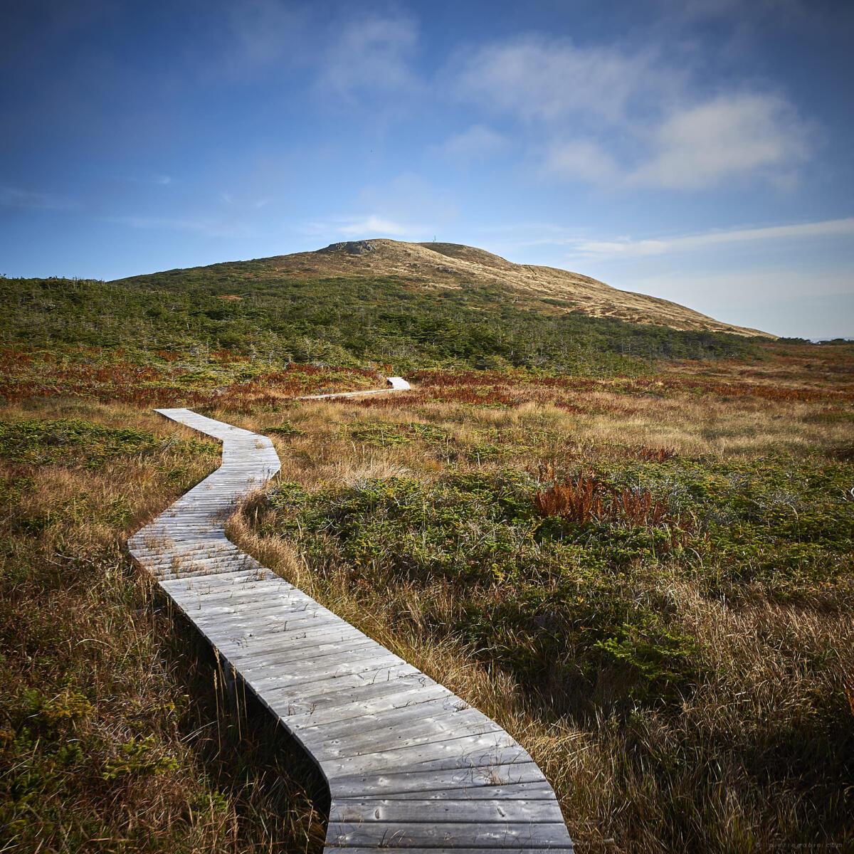040 Miquelon